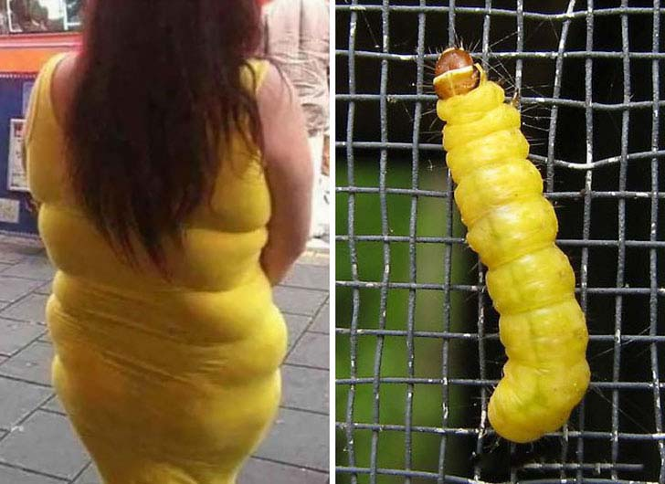 20-funniest-who-wore-it-better-pictures-that-you-cant-not-laugh-at_20