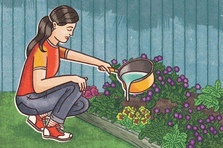 20-simple-gardening-tricks-for-beginners_8