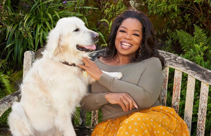 a-look-inside-oprah-winfreys-mammoth-90-million-montecito-mansion_1