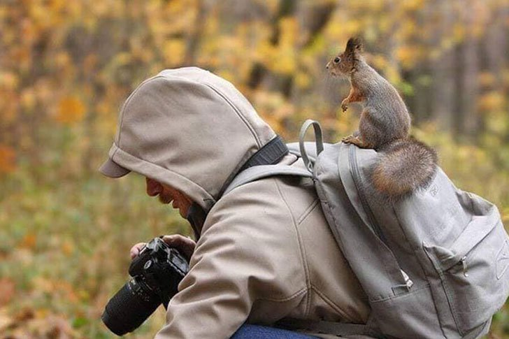 the-funniest-wildlife-photobombs-captured-by-photographers_13