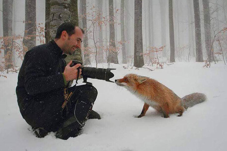the-funniest-wildlife-photobombs-captured-by-photographers_14