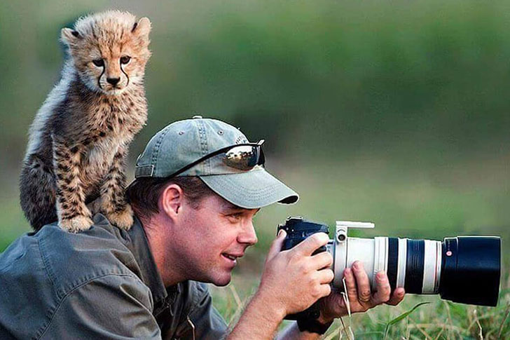 the-funniest-wildlife-photobombs-captured-by-photographers_15