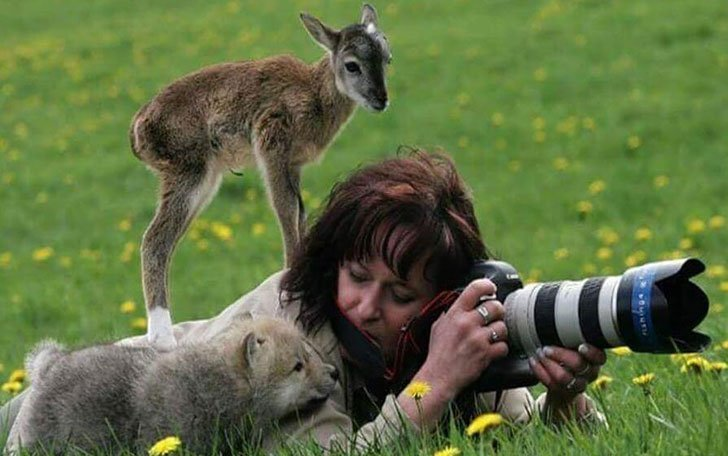 the-funniest-wildlife-photobombs-captured-by-photographers_4