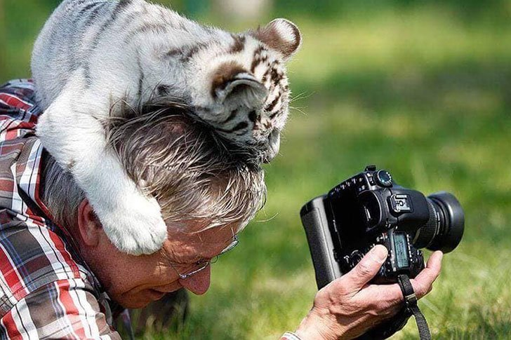 the-funniest-wildlife-photobombs-captured-by-photographers_5