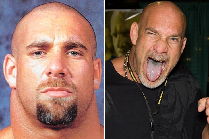 wwe-superstars-where-are-they-now-and-their-net-worth_14