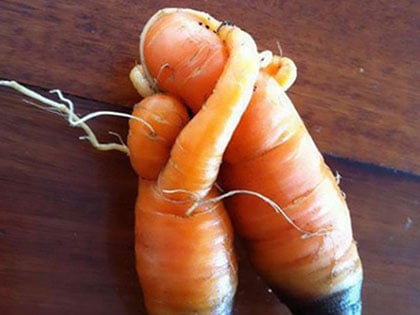 16 Oddly Shaped Fruits And Vegetables That Will Make You Look Twice
